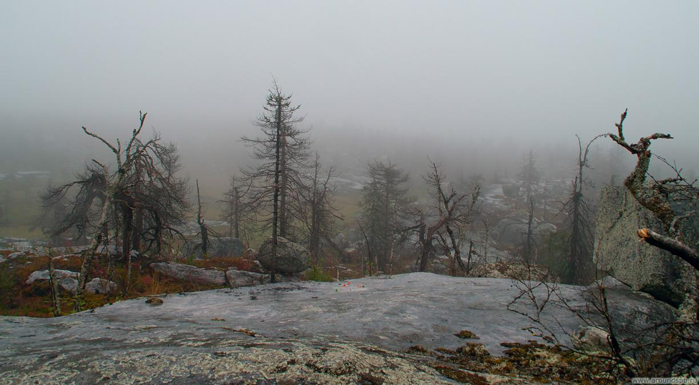 Туман на Воттовааре